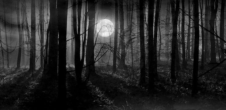 详解:互联网黑暗森林细节