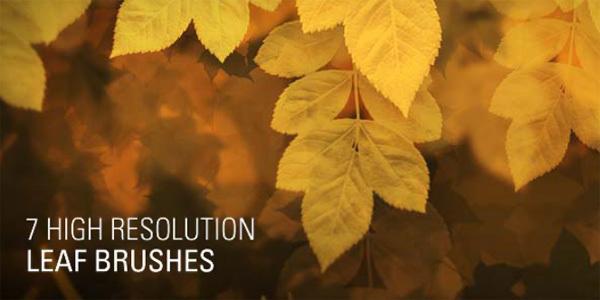 100套新鲜免费的PS笔刷下载 优设网 of Photoshop Brushes You Should Have in 2012