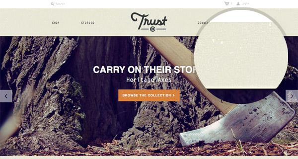 Trust Co