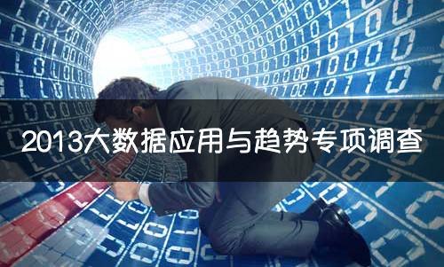 2013年大数据市场应用与趋势调研报告