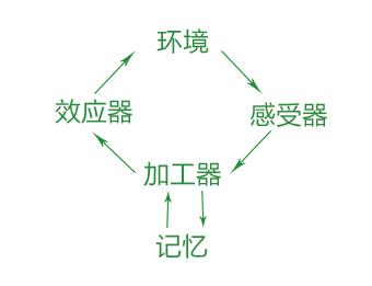 信息加工模型图