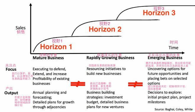 3-Horizons