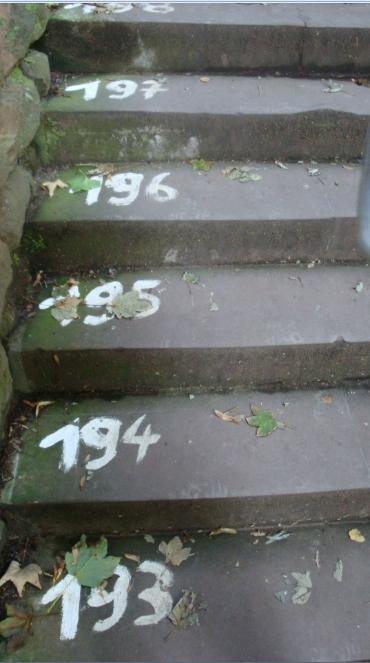 爬山数字阶梯