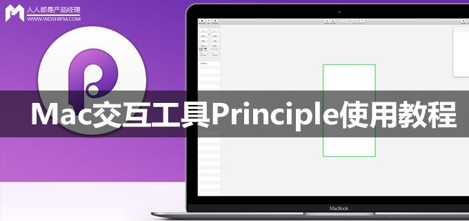 principlejiaocheng