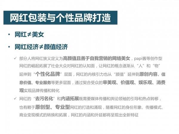 网红经济28