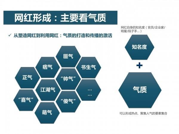 网红经济4