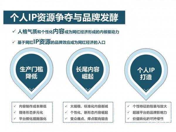 网红经济24