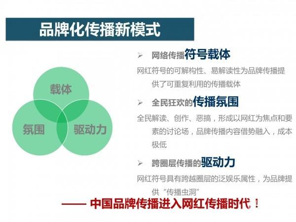 网红经济14