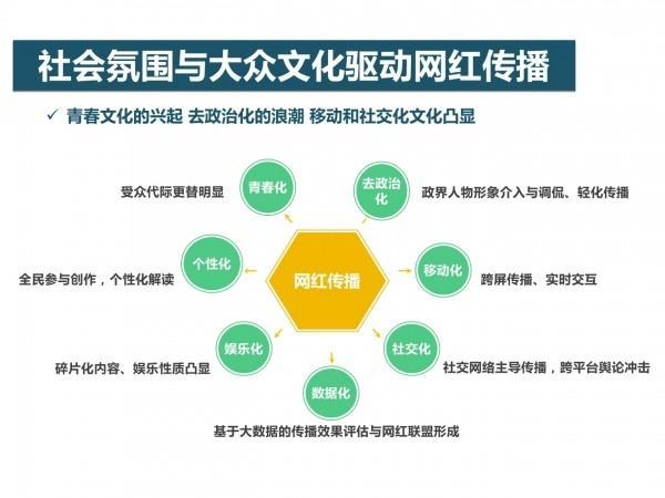 网红经济6