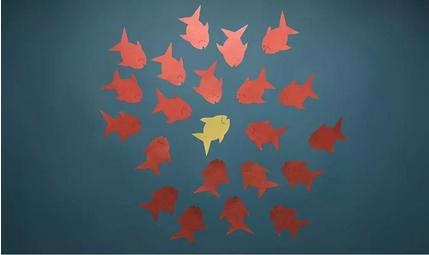 运营新人如何快速成长?5个思维助你完成职场跃迁插图(8)