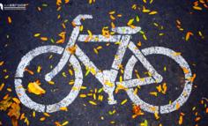 共享单车:激荡三年之后的平静
