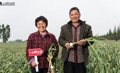 这么多电商平台,谁能帮中国农民卖好农货?