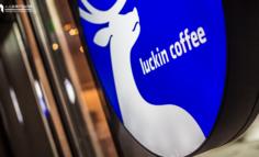 瑞幸咖啡的商业创新:流量池思维与裂变营销