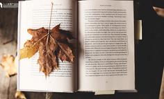 产品分析报告:懒人听书,领跑有声阅读