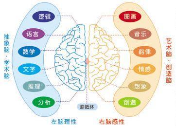 如何搭建属于你自己个人知识体系1.0