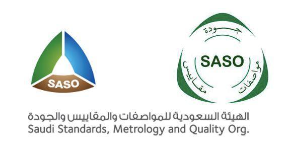 沙特电商物流揭秘:头程、清关、尾程玩家图谱