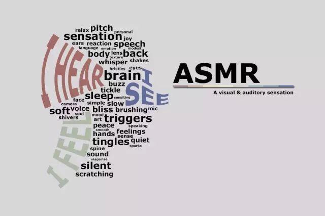 能不能把ASMR做成一门正经生意?