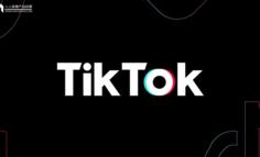 "TikTok被逐离印度""五环外"""