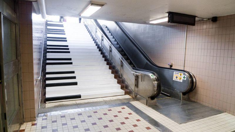 薛定谔的自动扶梯:当初是你要左行,左行就左行