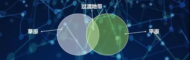 图02:二元过渡地带 来源:李有龙《保险业生态战略系列培训课程》