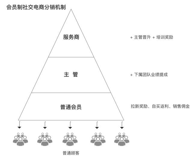 深度解析会员制社交电商:从模式设计到长期发展