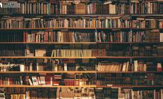 【天天问每周精选】第90期:微信读书为什么要设计替身书架?