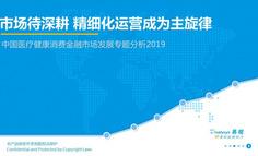 2019中国医疗健康消费金融市场发展专题分析
