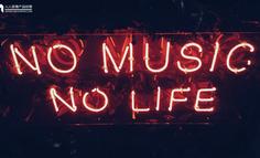 《野狼disco》一夜洗脑全民,神曲营销的背后到底有什么魔力?