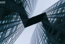 2020:规模化增长需要顶层设计