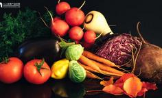 通过社区买菜,了解业务流程
