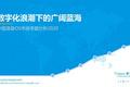 2020年中国语音OS市场专题分析