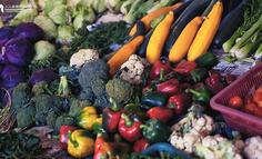 詳解2C 農業商業模式(含生鮮電商)