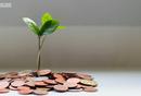 生财有术发售活动复盘:高客单价产品如何做到高转化?