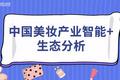 2020年中国美妆产业智能+生态分析