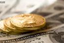 利润的来源:会员权益的前置和后置