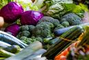 竞争日益激烈的生鲜行业,每日优鲜为何能得到资本垂青?