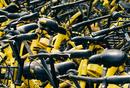 小黄车自动续费的背后:企业挖坑,用户填雷