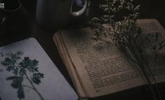 文本挖掘实录:用文本挖掘剖析54万首诗歌