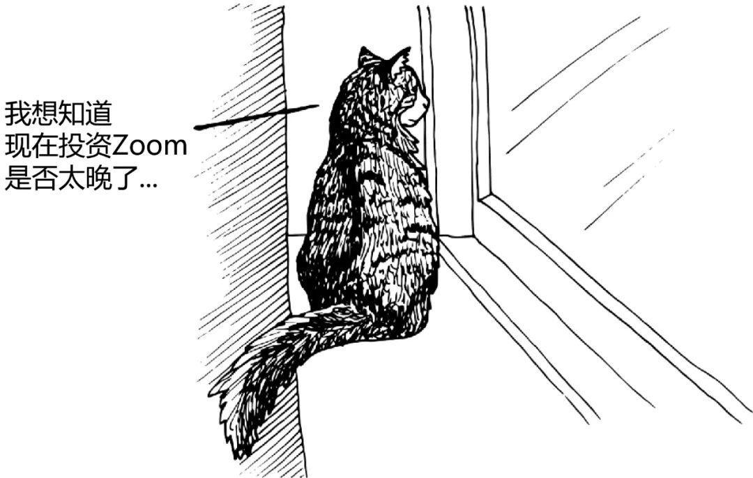 用户代表 - 为所欲为的猫