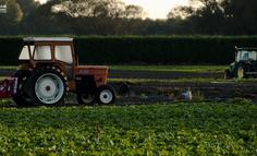 最全农业模式分类概念详解