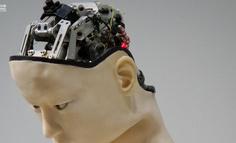 """为什么人工智能需要""""以人为本""""的设计"""