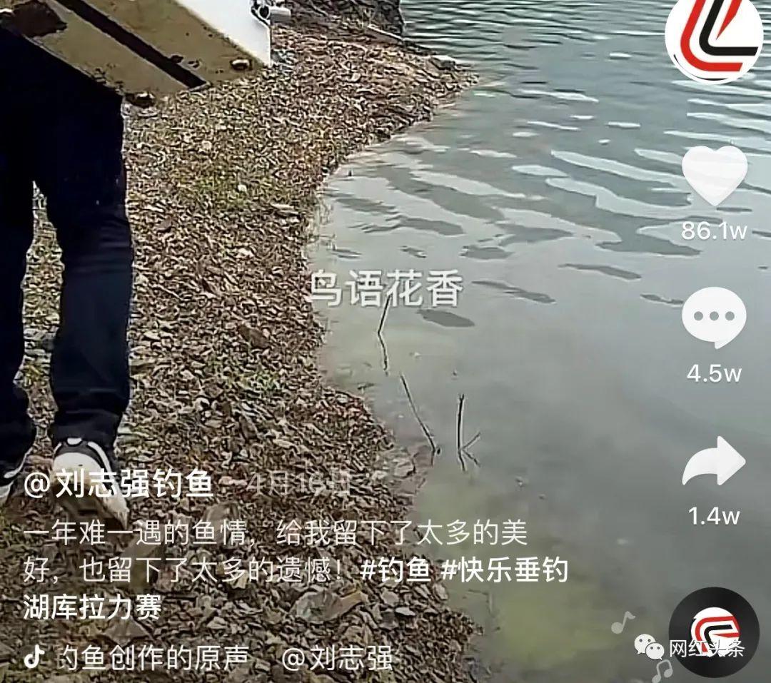 钓鱼也能火!两年全网粉丝过千万,钓鱼界头部网红刘志强的涨粉秘籍
