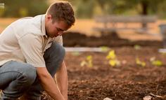 很多互联网名人都说去做农业,实际上呢?