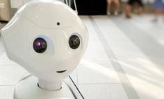 """从小众到流行:全球AI创新为何纷纷变得""""柔软"""""""