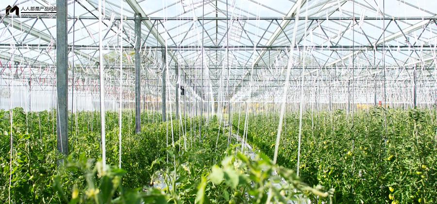 农业创新创业机会点——庄稼医院.商业动态